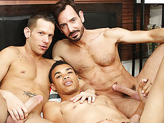 Rimmed out and fed a lot of cock, young Robbie Anthony is swapped between 'em as they slip into his wazoo and mouth and work their way to a 3 way